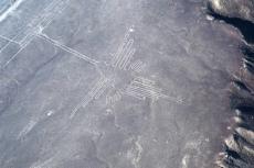 Koliber z Nazca