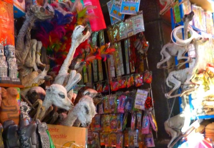La Paz, Mercado de las brujas