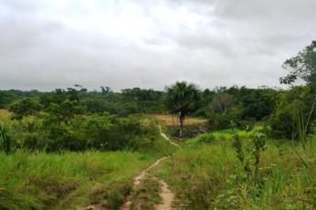 Droga do wioski indiańskiej ;)