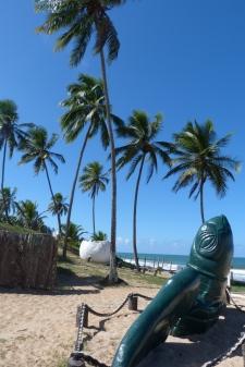 Bahia, rezerwat zólwi (2)