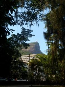 Ogród Botaniczny, Rio de Janeiro 2