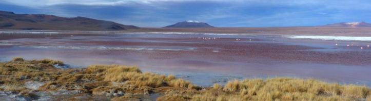 Boliwia Laguna Colorada 1