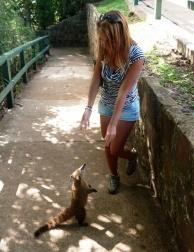 Przyjaciel w podróży ;)