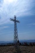 Tarnica