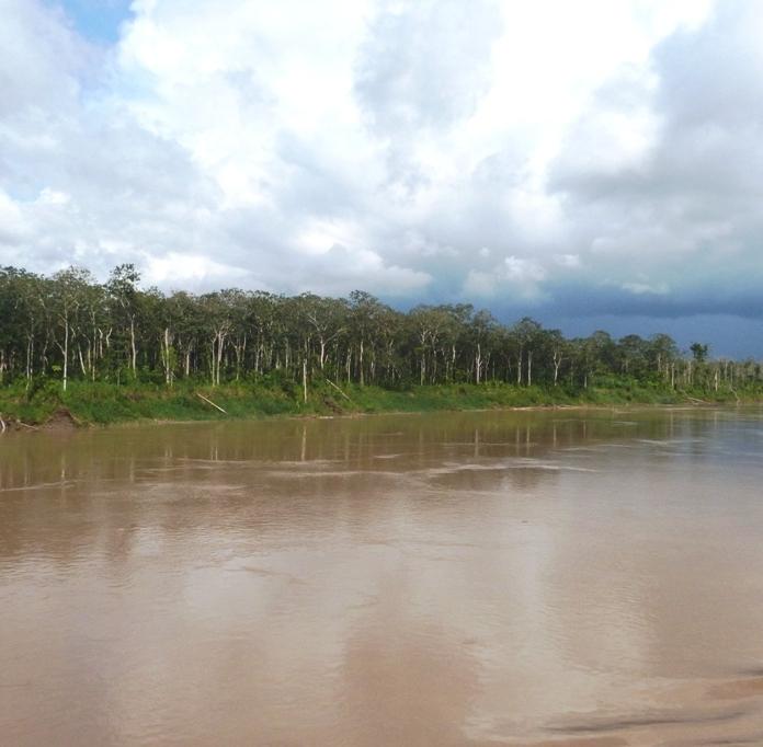 Amazonia Ukajali rejs Peru