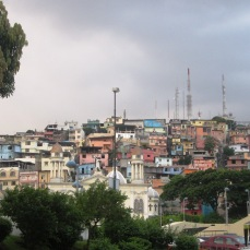 Guayaquil (5)