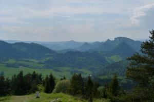 Szlak graniczny Pieniny Wysoki Wierch