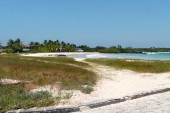 galapagos-isla-isabela-9