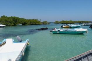 galapagos-isla-isabela