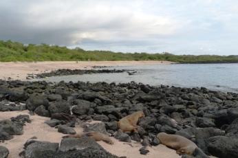 galapagos-san-cristobal-punta-carola