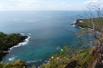 galapagos-san-cristobal-tijeretas