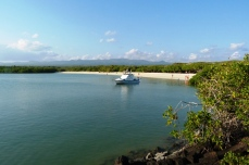 galapagos-tortuga-beach-4