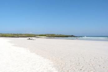 galapagos-tortuga-beach
