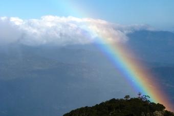 Panama, szlak na wulkan Baru 8