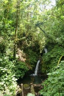 Wodospady Monteverde