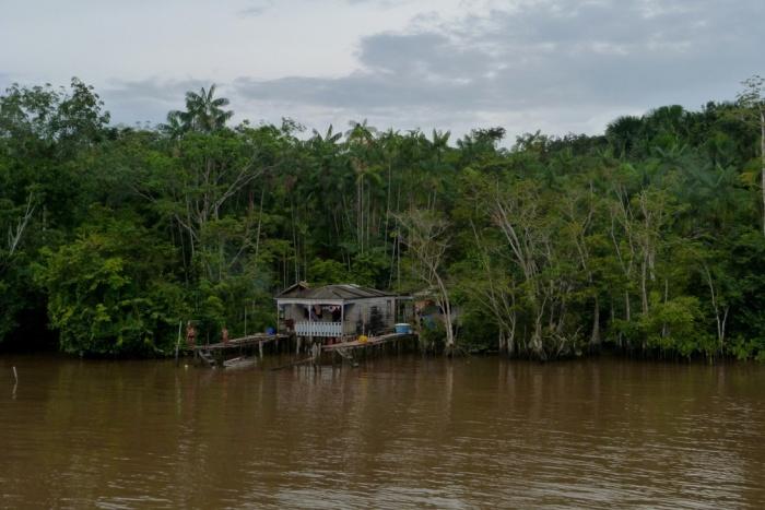 Amazonia Brazylia