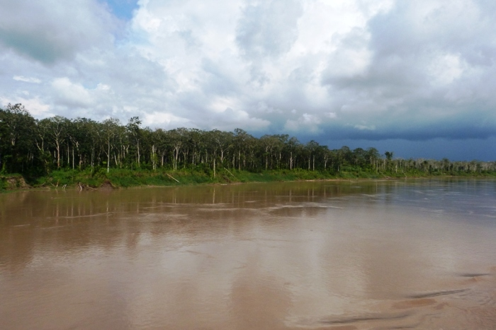 Amazonia Peru (4)