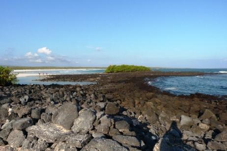 Galapagos, Tortuga Beach (5)