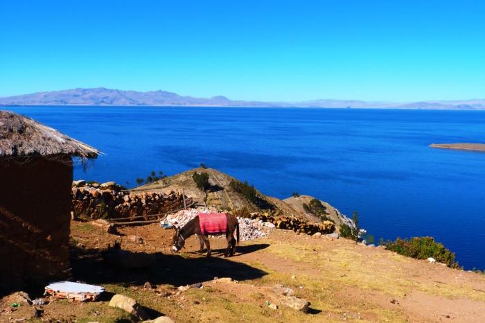 Jezioro Titicaca - Isla del Sol1