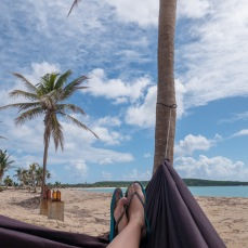 Vieques (3 of 1)