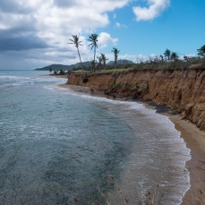 Vieques (5 of 1)