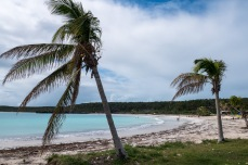 Vieques Portoryko (1 of 1)