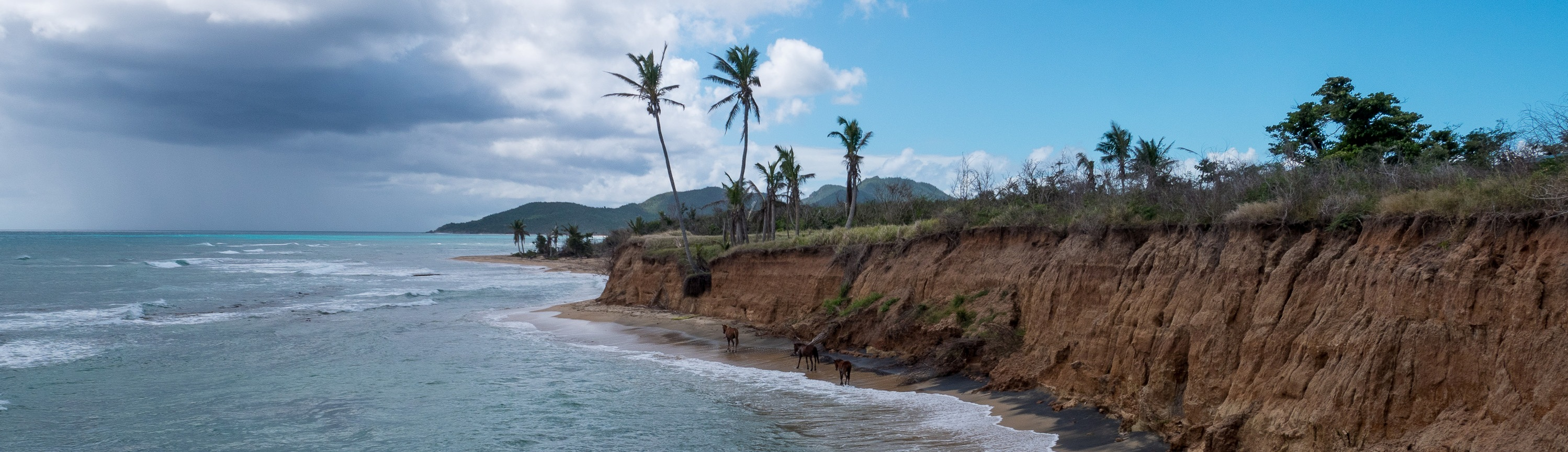 Vieques (5 of 1) — kopia