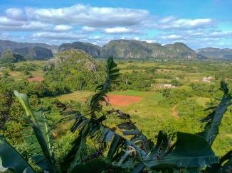 Kuba Vinales (2)