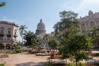 Hawana Centro (12 of 1)