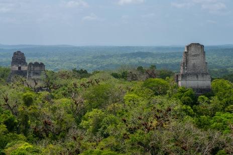 Tikal (17 of 1)
