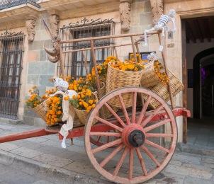 Oaxaca Dzień Zmarłych (20 of 42)