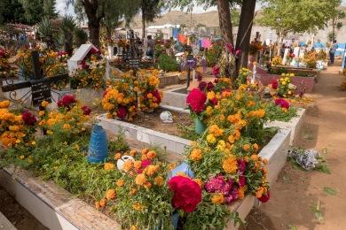 Oaxaca Dzień Zmarłych (36 of 42)