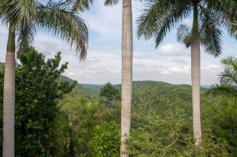 Kuba Las Terrazas