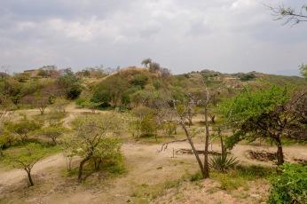 Oaxaca Monte Alban (7)