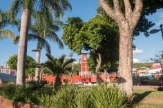 Oaxaca Tule (3)
