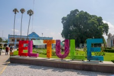 Oaxaca Tule (5)