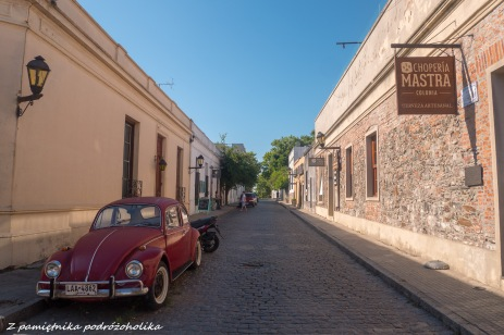 Colonia (6 of 14)