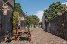 Colonia (7 of 14)