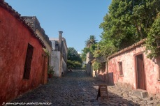 Colonia (8 of 14)