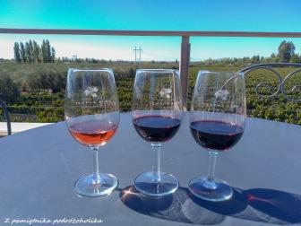 Argentina Mendoza wino (1 of 2)