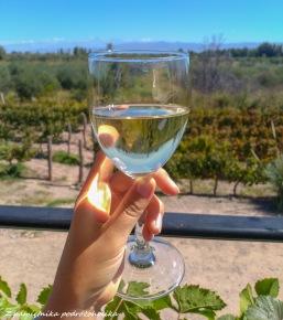 Argentina Mendoza wino (2 of 2)