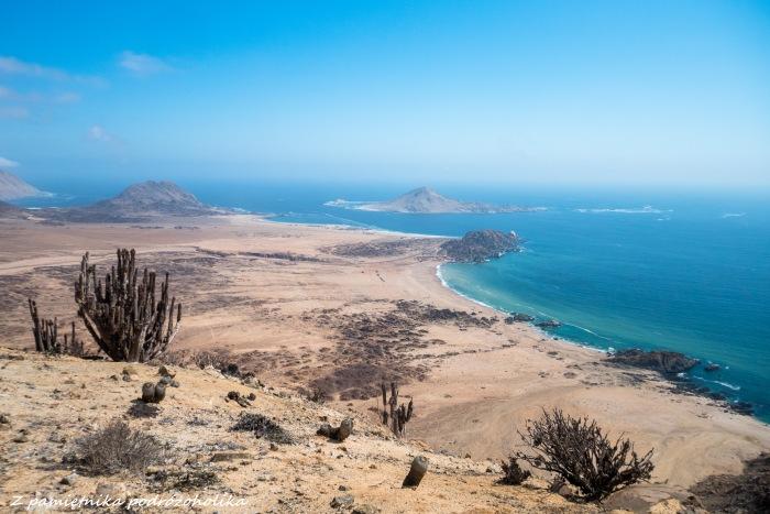 Chile Parque Pan de Azucar (4 of 7)