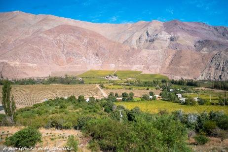 Chile Valle del Elqui (3 of 8)