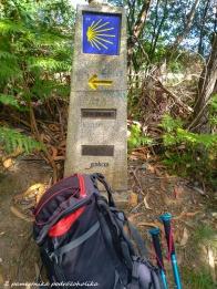Camino de la costa 5 (10 of 23)